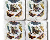 """Stone Coasters, """"Vintage Butterflies"""", Natural History Coasters"""