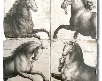 Equestrian Horses, Vintage Print Stone Coasters