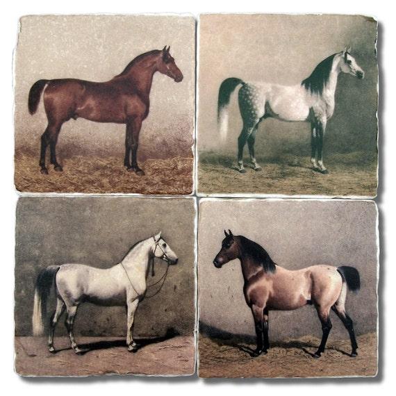 Equestrian Horses Vintage Illustrations, Stone Coasters