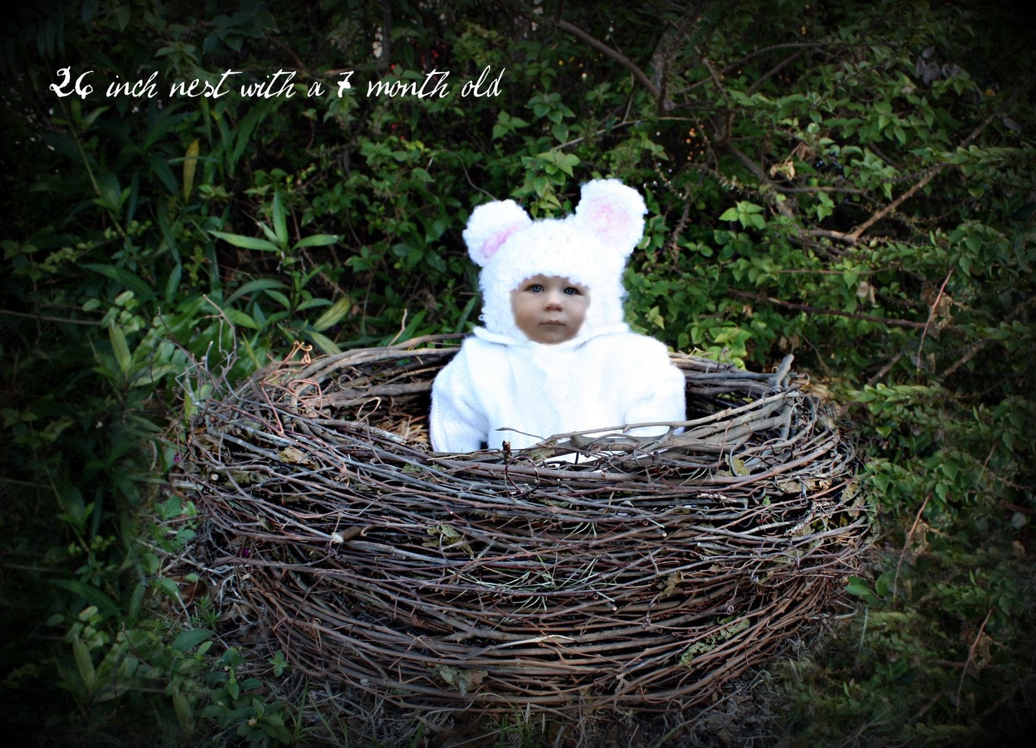 Extra Large Bird S Nest Photo Prop For Babies Multiple