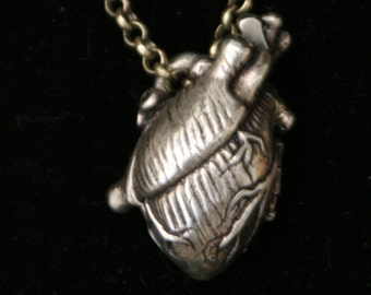 Anatomical Human Heart Locket