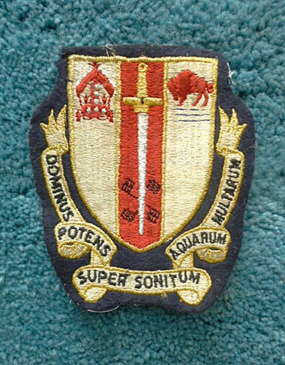 Vintage Buffalo Badge