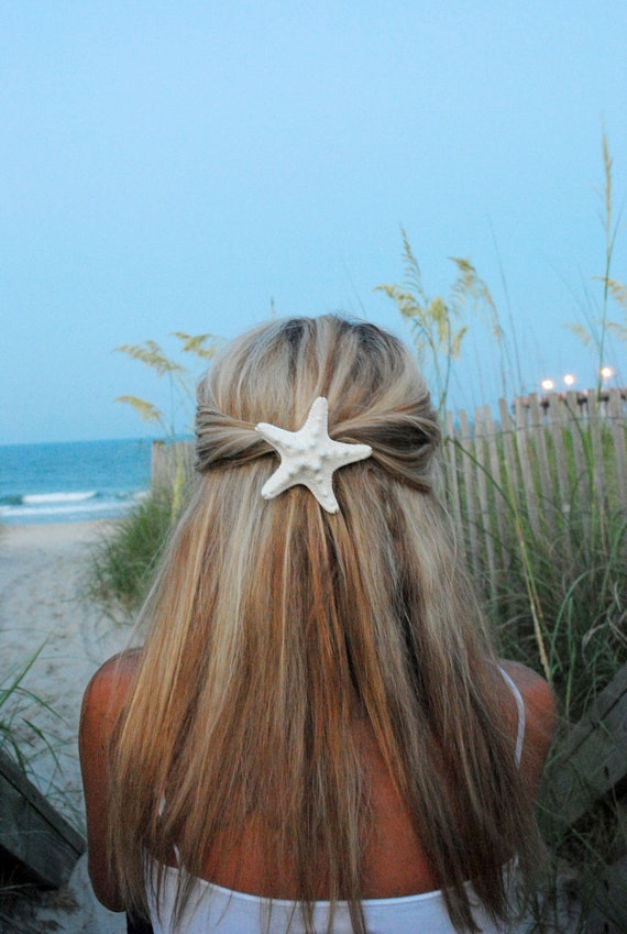Knobby Starfish Hair clip Real Starfish french barrette