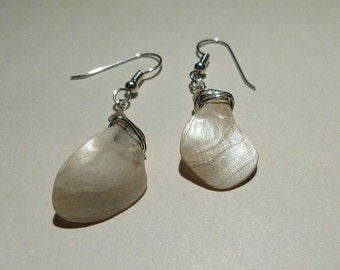 White pearly shell earrings