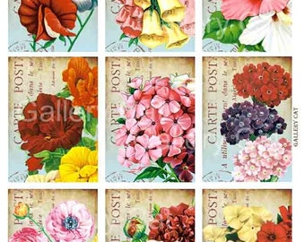 Old Fashioned Garden Flowers on French Postcard Digital Collage Sheet Instant Download Original Whimsical Altered Art Gallery Cat CS9