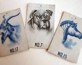 Plow Boy Tobacco, Animal Card Series, Zebra No 15, Spaulding & Merrick