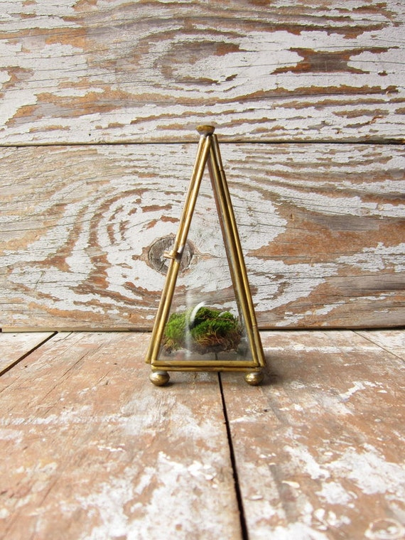 Vintage Pyramid Shadow Box