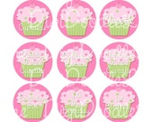 Cupcake with Cherry On Top Pink and Green 1 Inch Circles Collage Sheet 4 x 6 Inch JPG for Bottlecaps Hairbows Jewelry Magnets and More