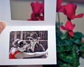 Tango Red Passion 2x3 (5x7,5 cm) Photo Valentine Cards with white passepartout love greetings red passion tango fine art photography