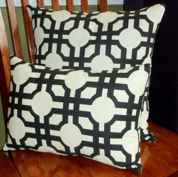 Decorative Throw Pillow Covers Black and White Set of Two