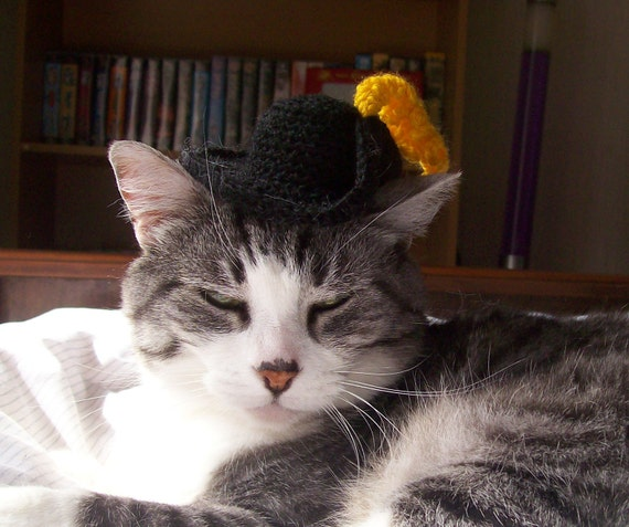 Puss In Boots Cat Hat