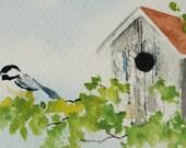 Chickadee couple next to their bird house