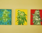 Primary Colors - Set of 3 Giclee Canvas Prints