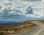Denali Highway Photograph