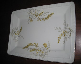 John Maddock and Sons Platters with Yellow Floral Decor - England