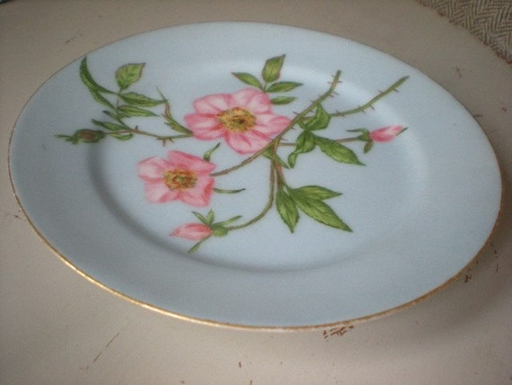 Blue Plate Gold trim with Pink Flowers Marked with 3 initials - Feb 1879