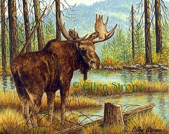 MOOSE- Giclee Print- Prince of the Forest - Moose Prints