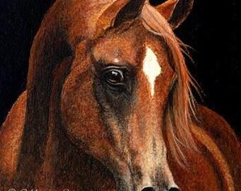 PRINT- Arab Horses, Horse Decor, Arabian Horse Decor, Giclee Prints, Art, Art Prints, Beautiful