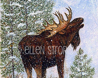 PRINTS, moose, moose decor, giclee prints, Ellen Strope, castteam, cabin decor, rustic decor, snow, trees