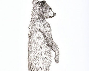 CARD, note card, bear, bear drawings, bear decor, cabin decor, Ellen Strope, castteam, black bears, black bear decor