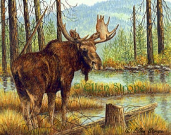 NOTE CARD, Moose, Prince, Forest, Water, Trees, Bull Moose, Cabin Decor, Lodge Decor, Rustic decor, Moose Decor