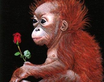 CARD, Happy Birthday Card,  Orangutan, Note Card, Orangutan Decor, Black, Baby Orangutans, Greeting Cards, Special Occassions, Ellen Strope