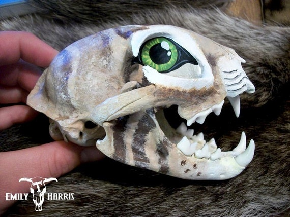 Bonnie the Painted Bobcat Skull