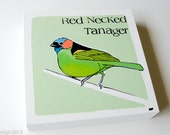 Original Fine Art Bird Painting 'Red Necked Tanager,' in Pastels, Coral and Lime Green