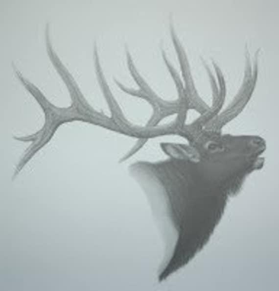 Items similar to Elk Pencil Sketch on Etsy