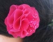 fushia hair flower with stamens
