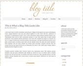 Orange Symmetry - SELF Hosted Wordpress Theme