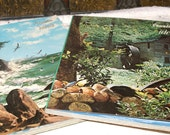 Set of 2 Wonderful Vintage Ideals Books...Vacation and Countryside..1968 and 1971..