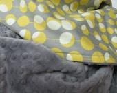 Grey  Minky Baby Blanket, Amy Butler Martini