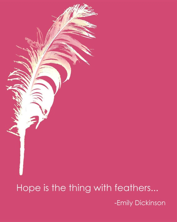 feather wallpaper pink