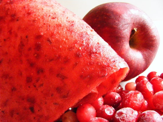 Cranberry Apple Chai -  Fruit Jerky - an Edible Delight