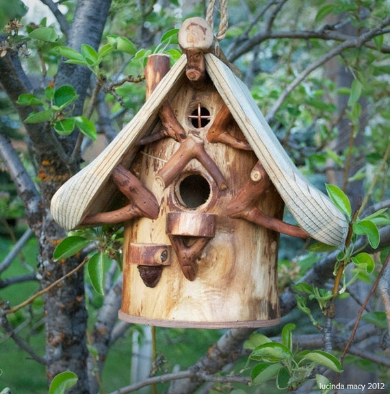 Natural Eco Friendly Songbird House for Common Birds