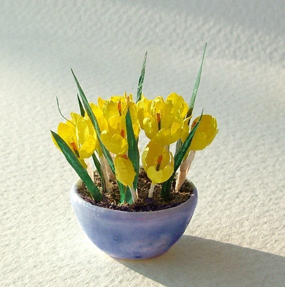 Miniature yellow crocus in a blue glazed ceramic bowl, in 12th, one inch scale