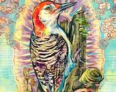 Divine Woodpecker