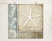 Coastal Seashells - Starfish 12x12 Art Print - Coastal Home Decor -Blue, Cream, White, Tan