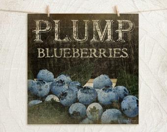 Plump Blueberries 12x12 Print -Kitchen, Vintage, Home, Wall Decor -Fresh Fruit Collection -Blue, Green, Black, Tan, White