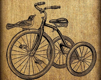 French Bird On Tricycle Vintage Digital Image Transfer Download 300 dpi for Pillows Totes Bags Napkins Towels