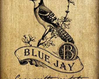Blue Jay Scroll Monogram Digital Image Transfer Download jpeg or png 300 dpi for Pillows Totes Bags Napkins Towels