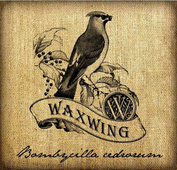 Waxwing Scroll Monogram Digital Image Transfer Download jpeg or png 300 dpi for Pillows Totes Bags Napkins Towels