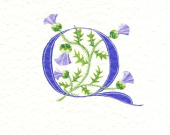 Custom initial letter 'Q' in dark purple with Scots Thistles.