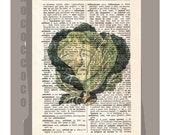 Antique French VEGETABLES/CABBAGE Artwork on a page from vintage Dictionary -Upcycled Book Print