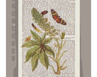 BOTANICAL9 - ARTWORK  printed on Repurposed Vintage Dictionary page -Upcycled Book Print