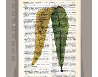 Rare FERN3 Artwork on a page from vintage Dictionary -Upcycled Book Print