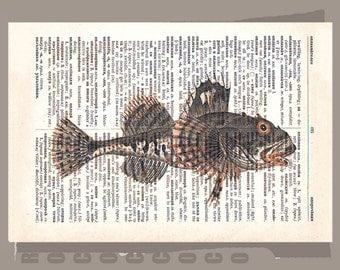FISH  -ARTWORK  printed on Repurposed Vintage Dictionary page -Upcycled Book Print