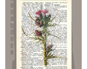 THISTLE1 Artwork on a page from vintage Dictionary -Upcycled Book Print
