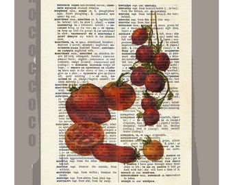 Antique French VEGETABLES/ TOMATOES Artwork on a page from vintage Dictionary -Upcycled Book Print